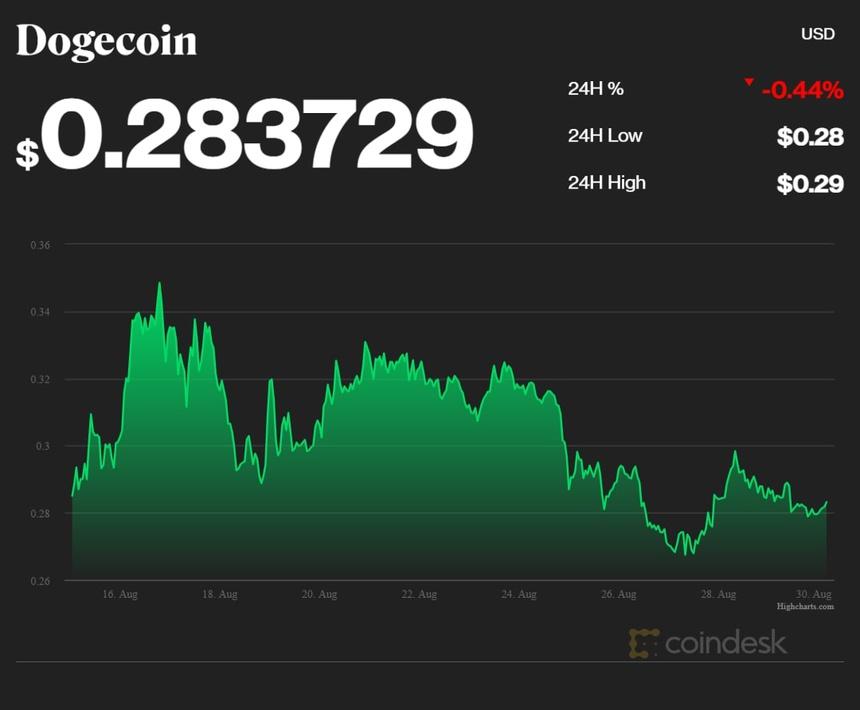 coindesk_DOGE_chart_2021_08_30[1].jpg